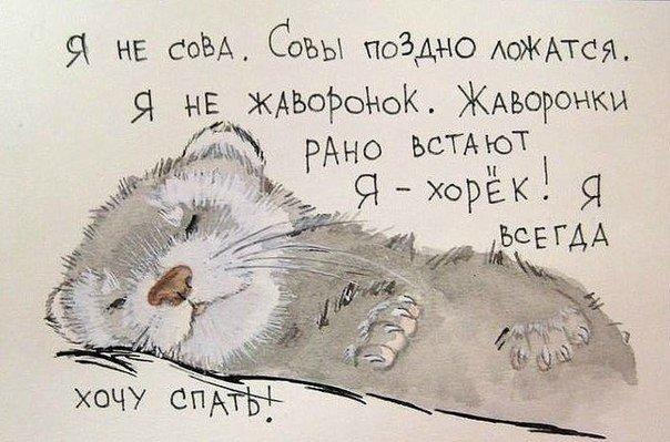 https://cs7057.vk.me/c540107/v540107163/22fb6/YWzdFCyl6C4.jpg