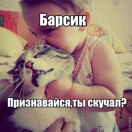 http://cs7063.vk.me/c540107/v540107185/18fd8/Eu5_CswydZE.jpg