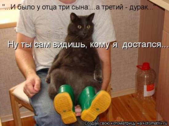 http://cs7063.vk.me/c540107/v540107224/21d43/igbk4P5zam0.jpg