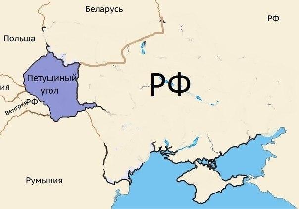 Неизвестные напали на офис избирательного штаба Порошенко в Брянке - Цензор.НЕТ 8536