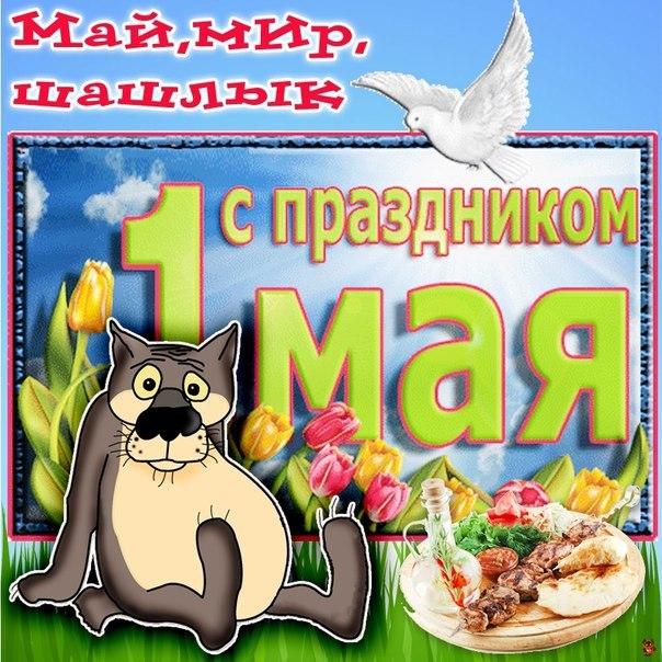 http://cs14113.vk.me/c540107/v540107556/d7d1/S3_dOFNVrF8.jpg