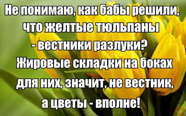 http://cs7058.vk.me/c540107/v540107596/3ae71/8t5wlTw4g28.jpg