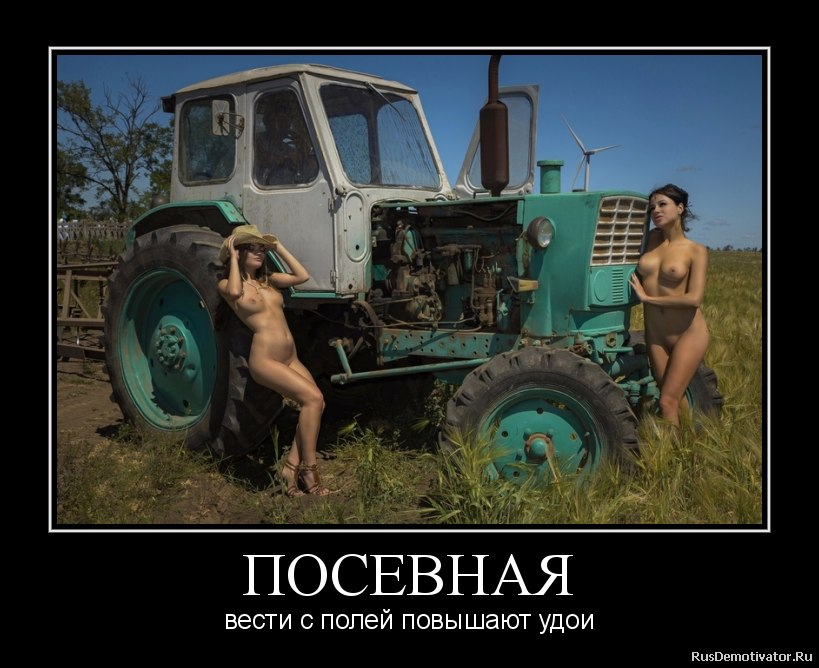 Пожил как сделать заячьи уши из картона фото пошаговая инструкция Новгородская