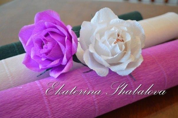Роза из гофрированной бумаги. Мастер-класс… (9 фото) - картинка