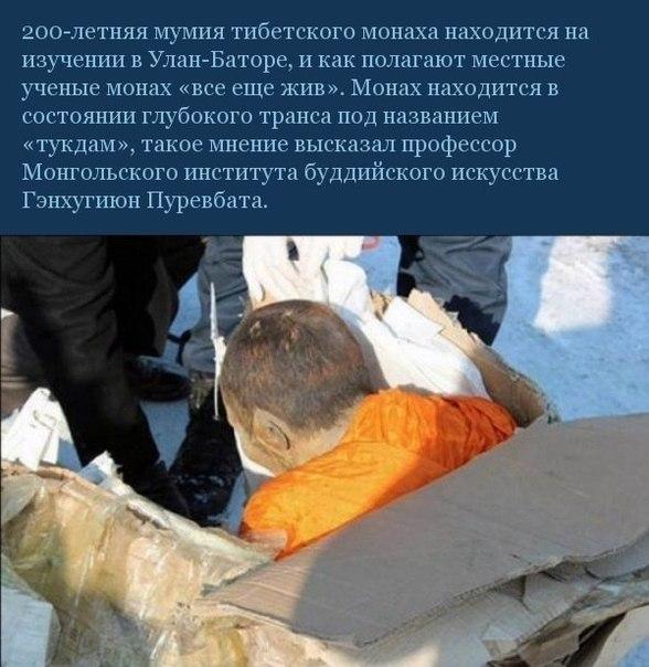 В Улан-Баторе изучают мумию 200-летнего монаха, который «все еще жив»
