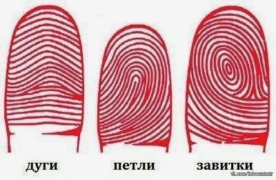 Определяем характер по отпечаткам пальцев