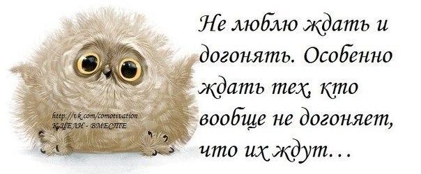 http://cs540100.vk.me/c540108/v540108062/185c1/NdO3Fl2K1Xw.jpg