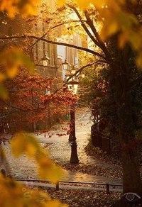 Отцвели цветы, падают листья, птицы молчат, лес пустеет и затихает.ОСЕНЬ. - Страница 6 Pq21F8W_FxY