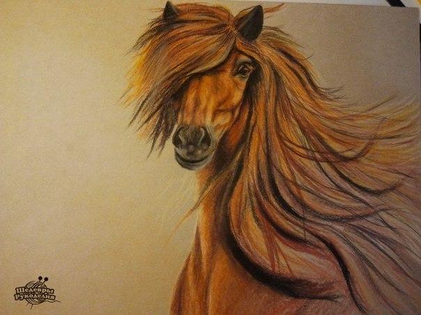 Как нарисовать лошадь цветными карандашами. Очень красиво!… (6 фото) - картинка
