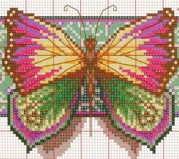 Вышивка крестиком. Бабочка. (5 фото) - картинка