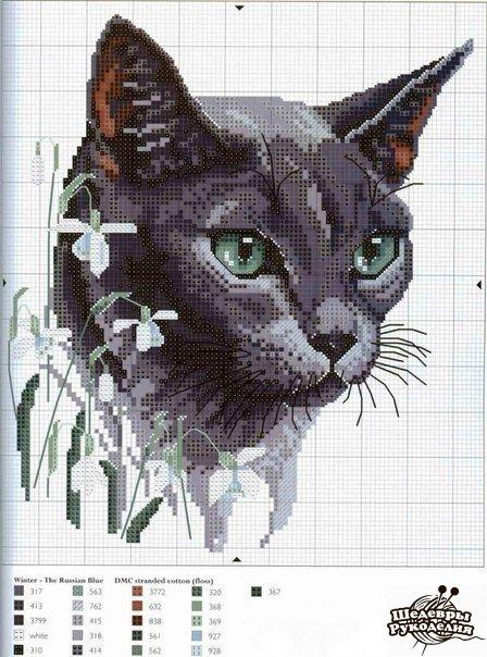 Вышивка крестиком. Кошки. (6 фото) - картинка
