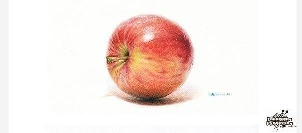 Рисуем яблоко цветными карандашами (8 фото) - картинка