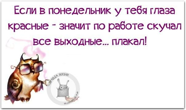 https://cs7052.vk.me/c540108/v540108123/1f21e/EJMV__QLMwM.jpg