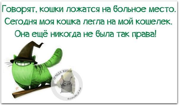 [Изображение: kCddpfDzKLQ.jpg]