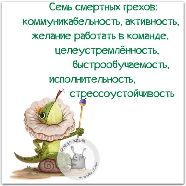 https://cs7052.vk.me/c540108/v540108123/23cd4/zFrdaoYp3S8.jpg