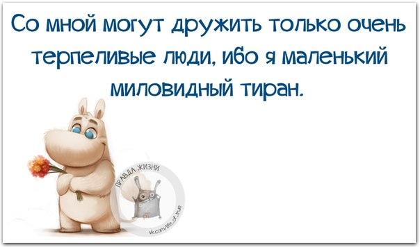 https://cs7052.vk.me/c540108/v540108123/24386/FVWX4z1UEs0.jpg