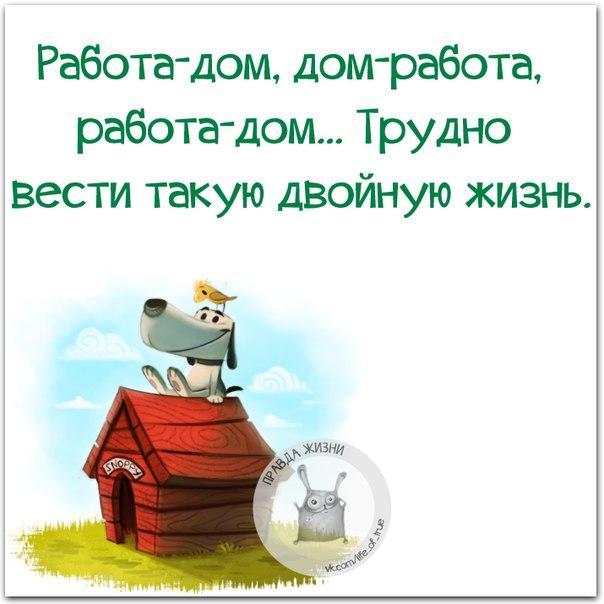 https://cs7052.vk.me/c540108/v540108334/10a38/JemJc8NefiQ.jpg