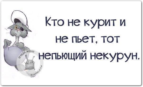 https://cs7052.vk.me/c540108/v540108334/c5c3/zsxw0ybSqNM.jpg