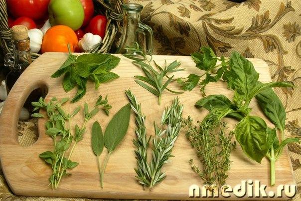 Сбор трав для похудения: сила природы