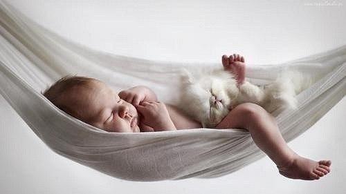 Сын уснул на диване и папа решил переложить его в кроватку. Взял осторожно на руки, а сынуля сквозь сон: - Положи, где взял.