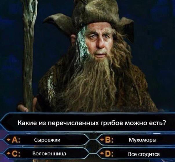 https://cs7066.vk.me/c540108/v540108423/1f1a1/OO6MmqsCER4.jpg