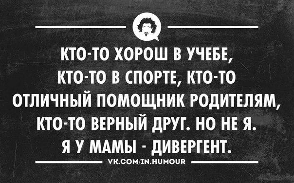 https://cs7059.vk.me/c540108/v540108486/10d7f/zYAy4CvyyDo.jpg