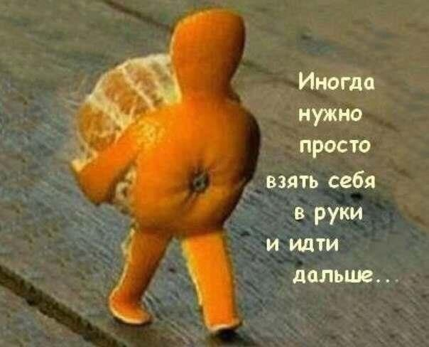 Веселые фотографии из сети - Страница 4 UuYPYjdHLBc