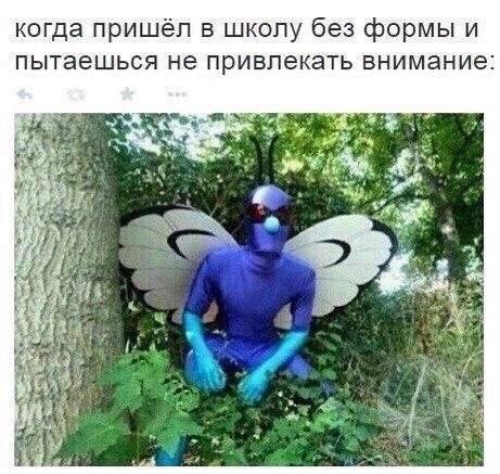 https://cs7064.vk.me/c540108/v540108659/bbd7/mGqf5J444WU.jpg