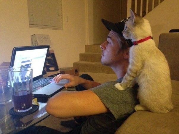 Всегда готовы помочь в работе.