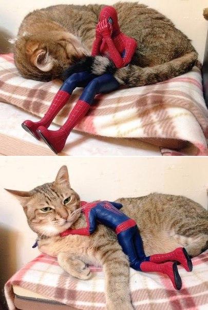 Даже супер-герой иногда нуждается в поддержке