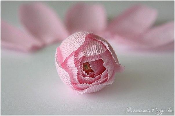 Розы из конфет и гофрированной бумаги. Мастер-класс....