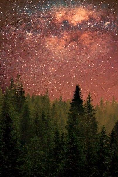 Столько путешествуя, он открыл для себя одну удивительную вещь: ни одни огни ноч...