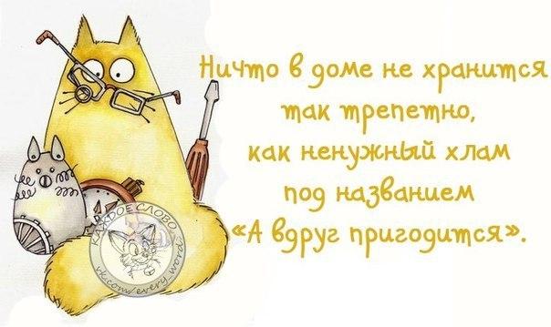 http://cs540100.vk.me/c540109/v540109062/3d992/53miWFn8uNc.jpg