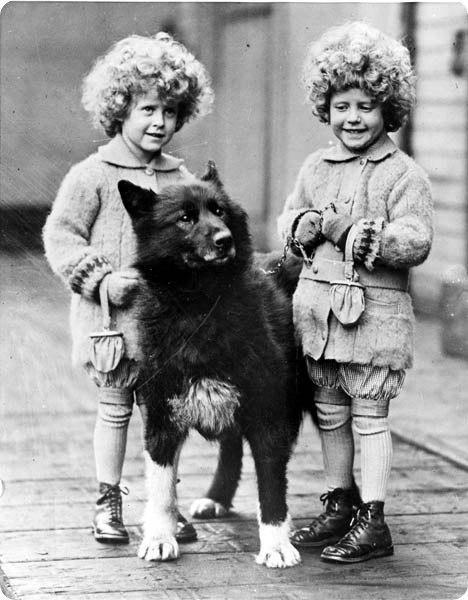 Собака-герой Балто В начале 1925 года дифтерия - страшная болезнь, поражающая детей,- разбушевалась в поселении Ном. Необходима была вакцина, притом всем окрестным больницам. Связавшись по телеграфу со всеми близлежащими городами, выяснили, что немного вакцины осталось в городе Анкоридж (Anchorage), который лежал за тысячу миль от поселения. Ледяной шторм и буря не позволяли взлетать самолётам. Было решено перевезти вакцину поездом в город Ненана (Nenana), но не дальше, за отсутствием…