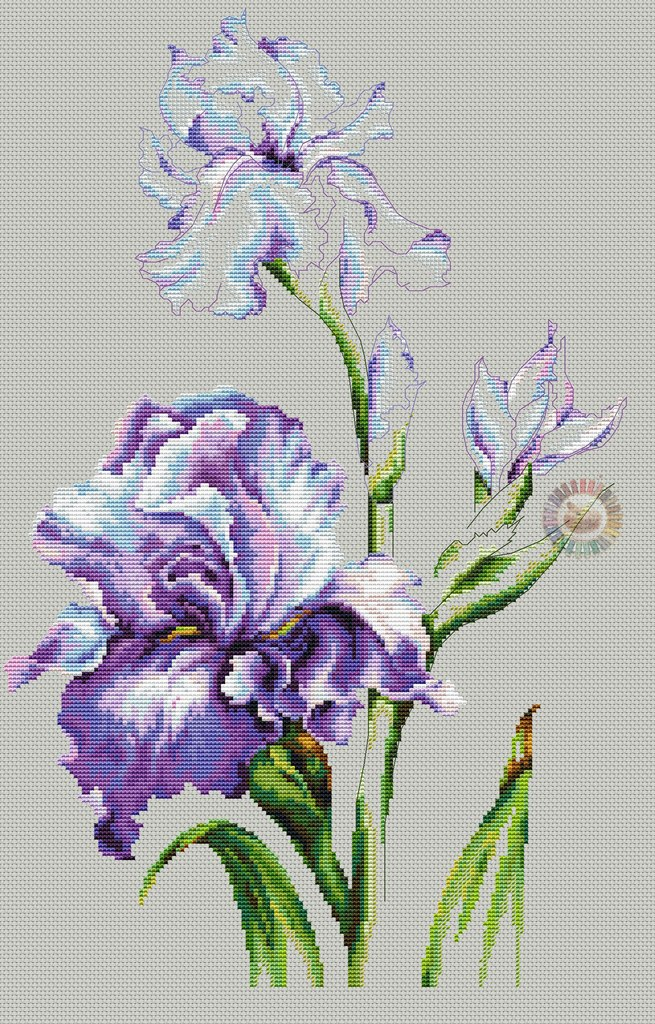 Цветок ириса схема для вышивки