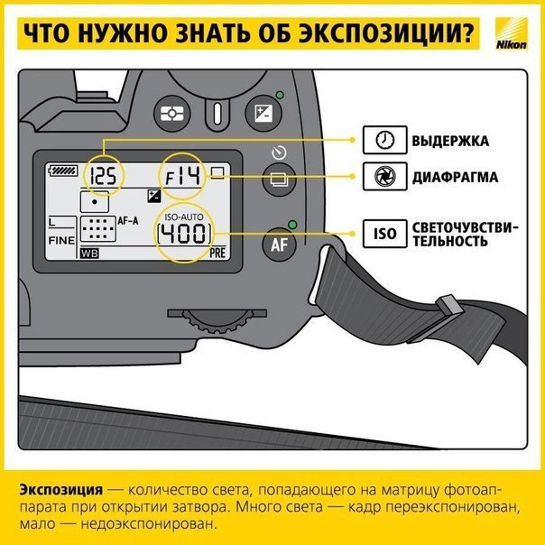 wTeiPxKNjv8.jpg