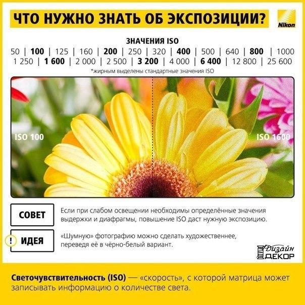 DrNgImVsOXY.jpg