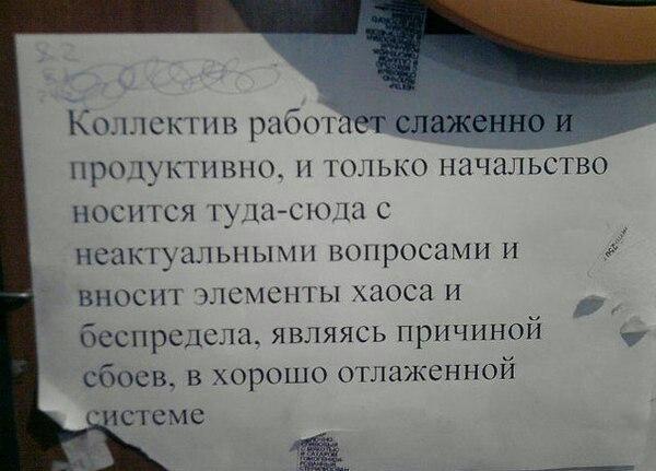 https://cs7059.vk.me/c540109/v540109349/d278/lDniF7ezBnA.jpg