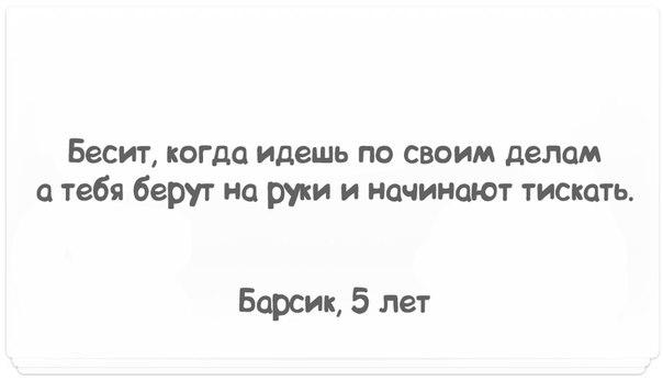 https://pp.vk.me/c540109/v540109441/2760/Vp45dWdwqIs.jpg