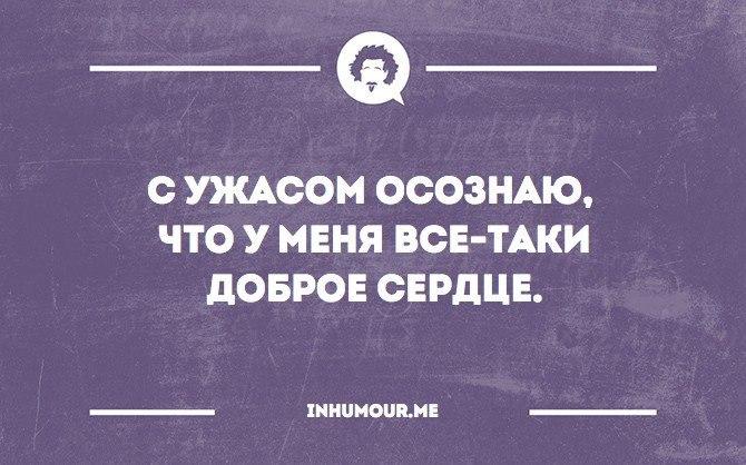 http://cs7050.vk.me/c540109/v540109554/16f58/HDKML2We8Ck.jpg
