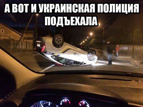 http://cs7063.vk.me/c540109/v540109710/13c78/mRLXPJLdQOE.jpg