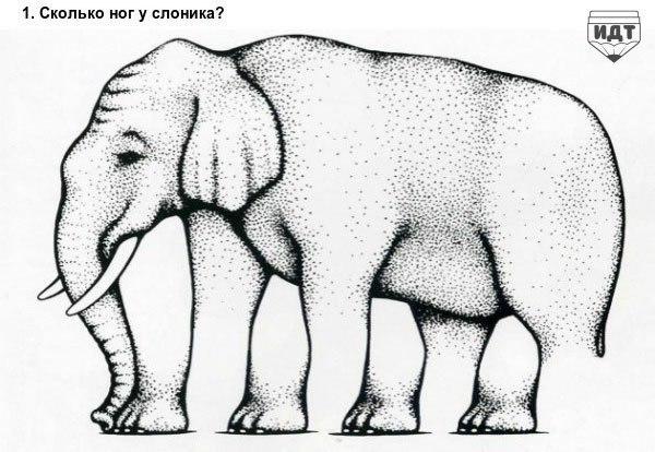 10 самых крутых оптических иллюзий