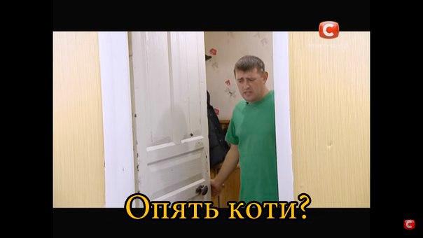 http://cs7052.vk.me/c540109/v540109968/ea21/AzRqmumfFSg.jpg