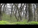 Александр Блик - Пришла весна...