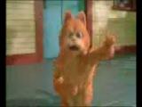 Поющий кот (Гарфилд)очень смешно!