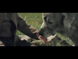 Белль и Себастьян (2013) трейлер