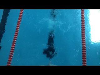 Чемпионат Хабаровского края по плаванию 2014