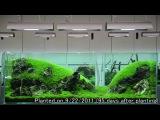 http://vk.com/natureaqua_fish