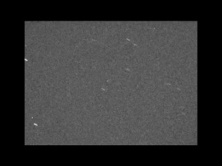 Asteroid 2014 DX110