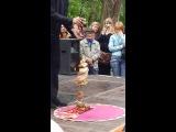 танец живота кукольный театр